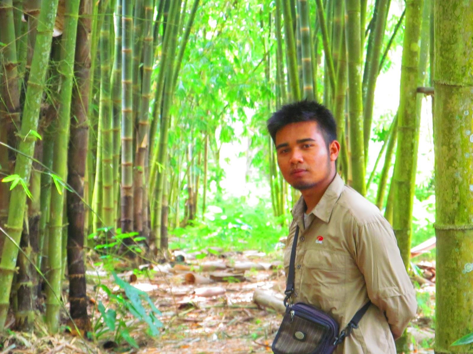 Main Hutan Bambu Bawah Gunung Raung Gus Bolang Kabupaten Bondowoso
