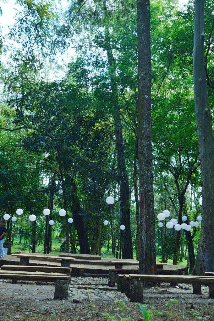 Tasnan Forest Tempat Ngadem Bondowoso Gus Bolang Kita Menuju Area