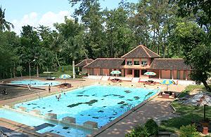 Tasnan Natural Bathing Pine Forest Tourism Located Taman Village Grujukan