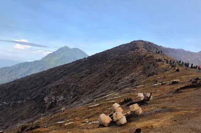 Tempat Wisata Bondowoso Terbaru 2018 Indah Hits Hutan Tasnan Kab