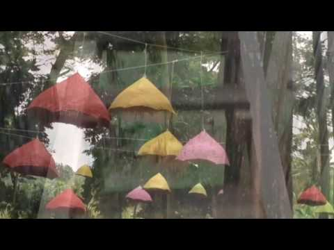 2 Pine Forest Tasnan Bondowoso Youtube Pemandian Kab
