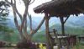 Galeri Foto Wisata Kabupaten Kota Bondowoso Arabica Homestay Gallery Pemandian