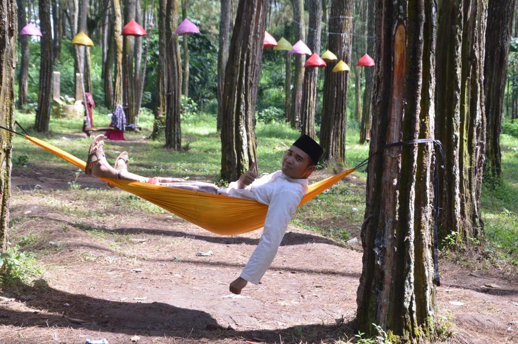 Tasnan Forest Tempat Ngadem Bondowoso Gus Bolang Kicauan Burung Terdengar