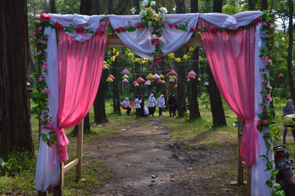 Tasnan Forest Tempat Ngadem Bondowoso Gus Bolang Sempat Bertanya Hati