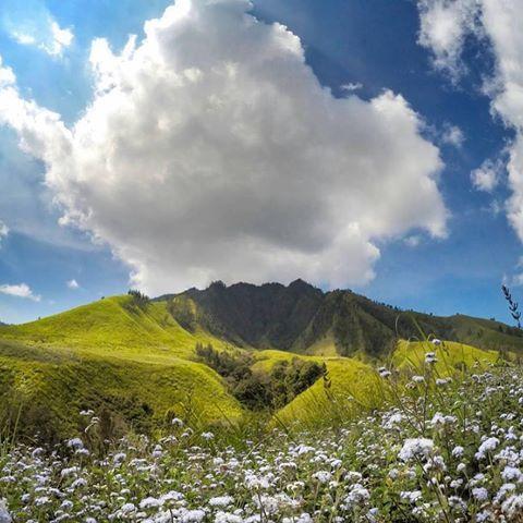 Hidden Paradise Bondowoso Surganya Traveler Jarang Kunjungi Wisatawan Letaknya Yg