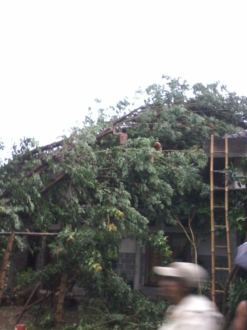 Kejadian Bencana Banjir Bandang Lombok Timur Ppkk Depkes Gallery Taman