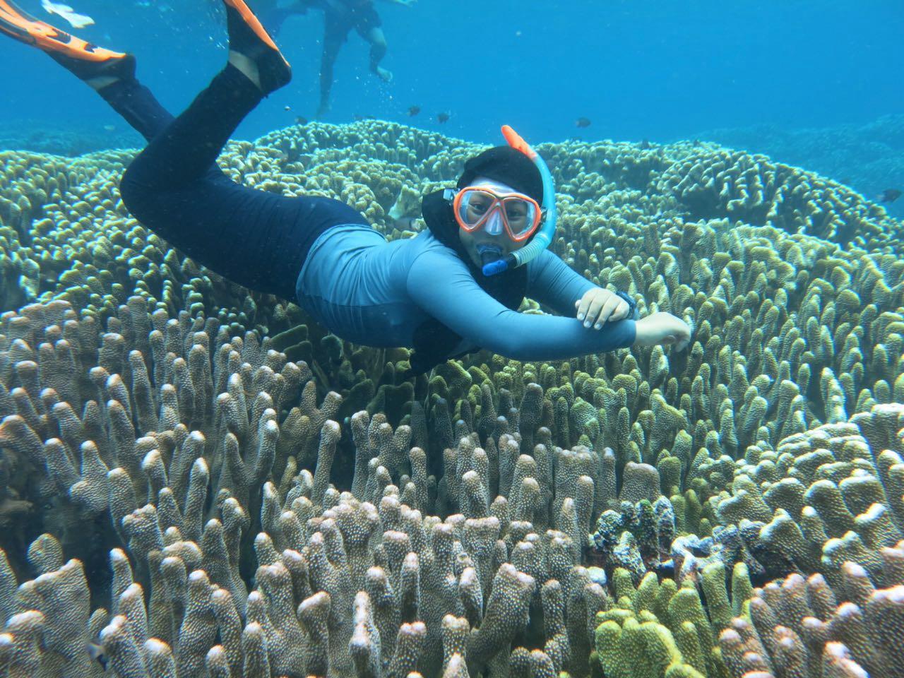 0852 9994 4169 Paket Wisata Gorontalo Taman Laut Olele 1