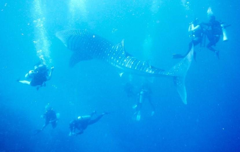 10 Tempat Wisata Bone Bolango Terbaru Hits Dikunjungi Pantai Botubarani