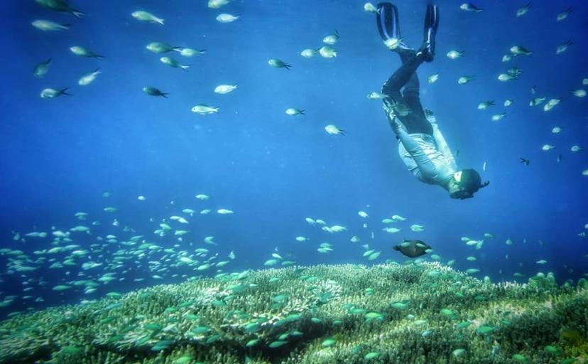 10 Tempat Wisata Bone Bolango Terbaru Hits Dikunjungi Taman Laut