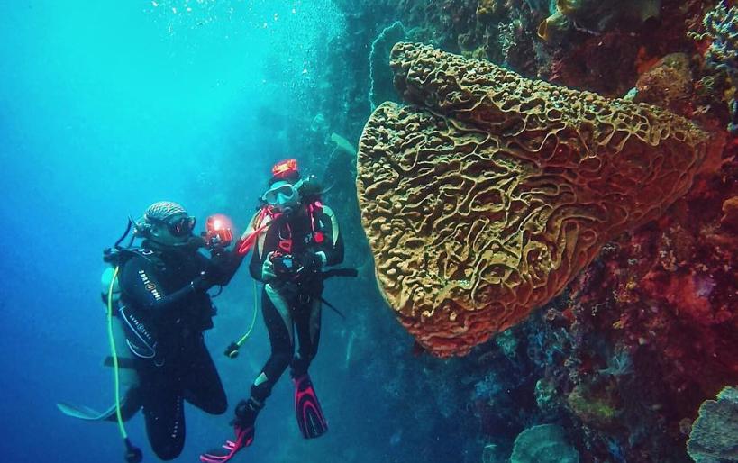 15 Tempat Wisata Gorontalo Terbaru Hits Dikunjungi Taman Laut Olele