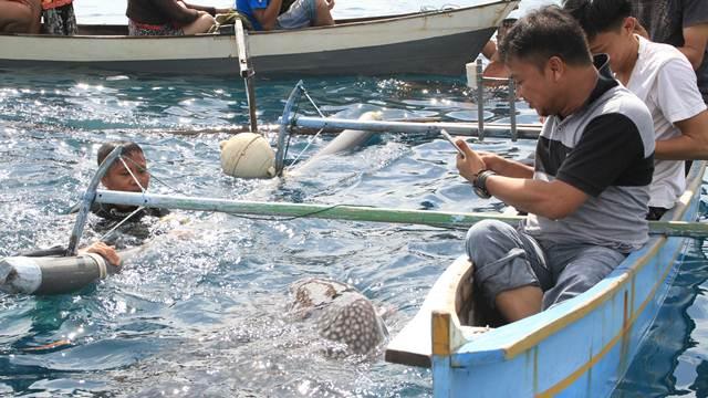 Bone Bolango Destinasi Wisata Gorontalo Hargo Taman Laut Olele Kab