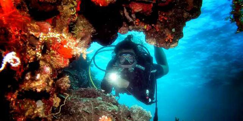 Keindahan Bawah Laut Olele Surga Tersembunyi Kompas Taman Wisata Kab