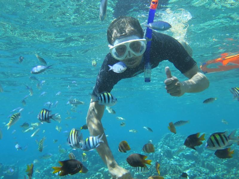 Menyelami Keindahan Taman Laut Olele Bone Bolango Ingatan Perjalanan Kabupaten
