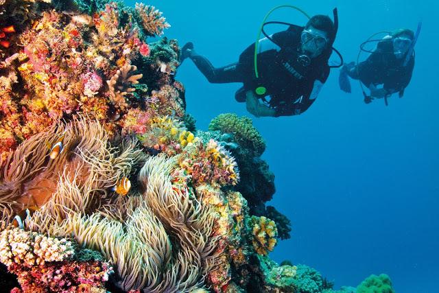 Pantai Olele Mempunyai Surga Bawah Laut Indah Hasil Gambar Taman
