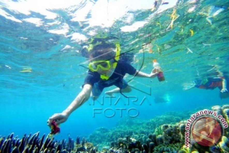 Putri Pariwisata Indonesia Sebut Olele Menakjubkan Website Resmi 2014 Syarifah