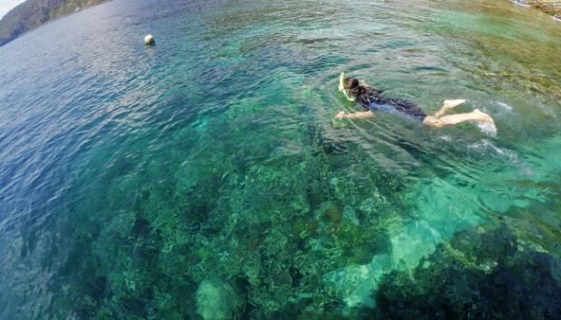 Taman Laut Olele Menuju Destinasi Wisata Tingkat Dunia Travel Tempo