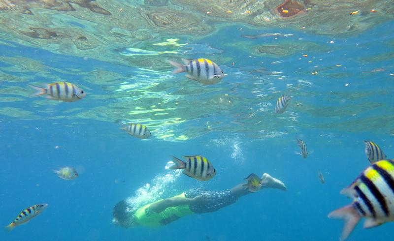Taman Laut Olele Tetap Ramai Wisatawan Walaupun Gelombang Tinggi Https