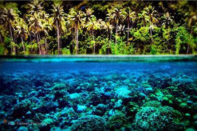 Wisata Gorontalo Keindahan Pantai Olele Taman Laut Terletak Desa Kecamatan