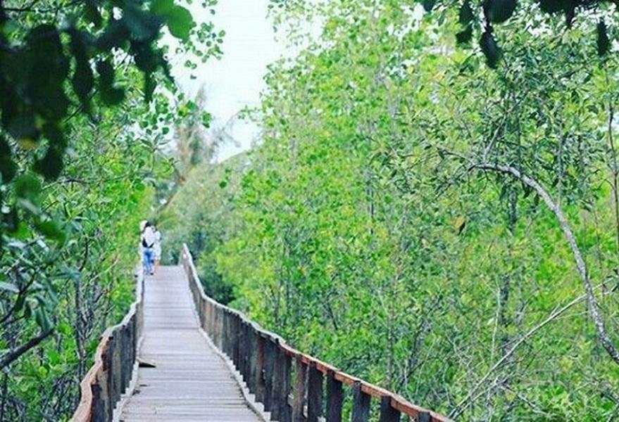 17 Tempat Wisata Kalimantan Utara Indonesia Hutan Mangrove Pulau Bunyu