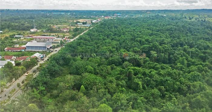 Minta Hutan Kota Dikelola Bulungan Post Tak Bunda Hayati Tanjung
