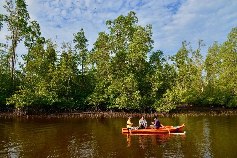 Telukharunews 2017 Perahu Listrik Jadikan Hutan Mangrove Kuale Wisata Green
