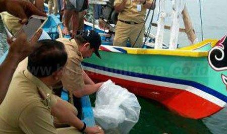 Tebar 6000 Ikan Laut Nelayan Bisa Tangkap Kerapu Dinas Perikanan