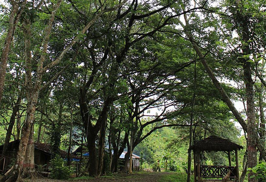 107 Tempat Wisata Kalimantan Utara Menarik Wajib Hampir Sama Kabupaten