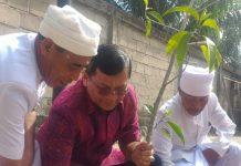 Home Berita Aktual Bali Balipuspanews Kunjungi Kaltara Wabup Sutjidra Tanam