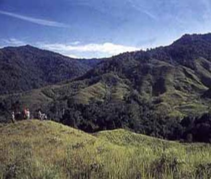 Destinasi Wisata Indonesia Taman Nasional Kayan Mentarang Daerah Hulu Pegunungan