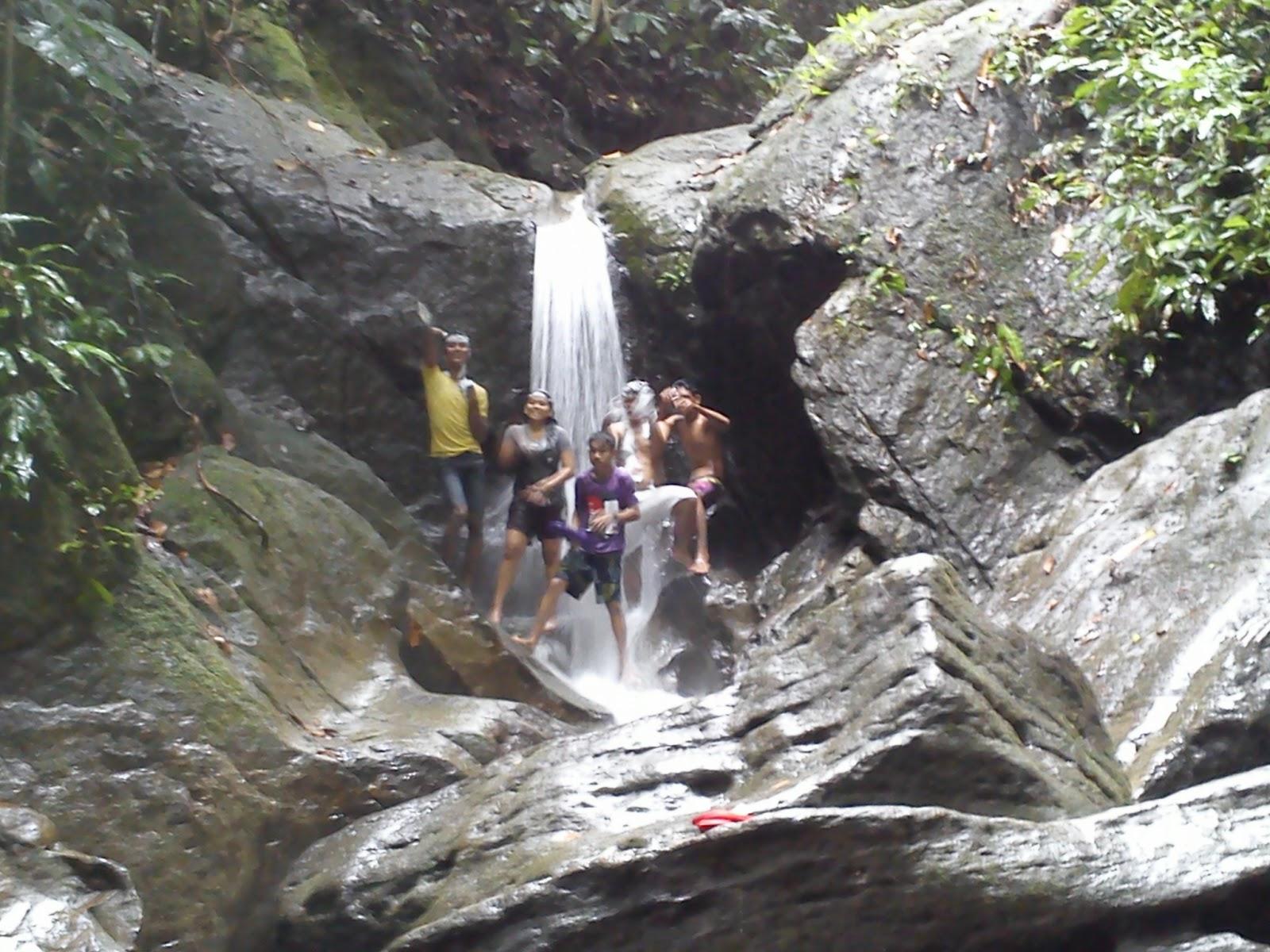 Juli 2013 Taman Nasional Indonesia Gunung Leuser Cendrawasih Kab Bulungan