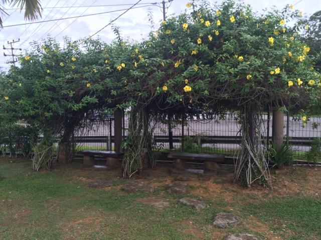 Taman Cendrawasih Tanjung Selor Majidi Zaril Bahkan Tempat Duduk Beratapkan