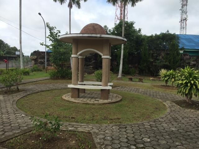 Taman Cendrawasih Tanjung Selor Majidi Zaril Tanaman Hias Pohon Palem