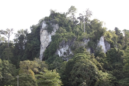 Gunung Putih Taman Selimau Kab Bulungan