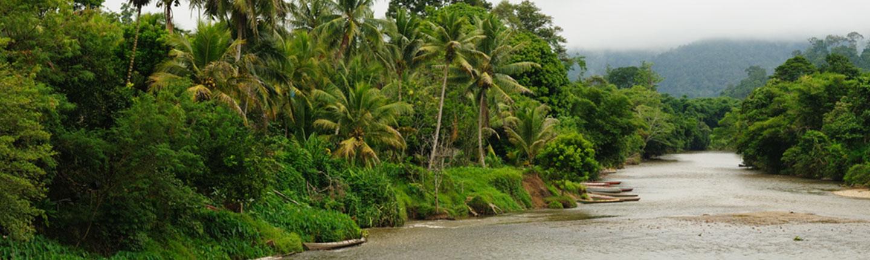 Hotel Tanjung Selor Cari Booking Ribuan Terbaik Taman Selimau Kab