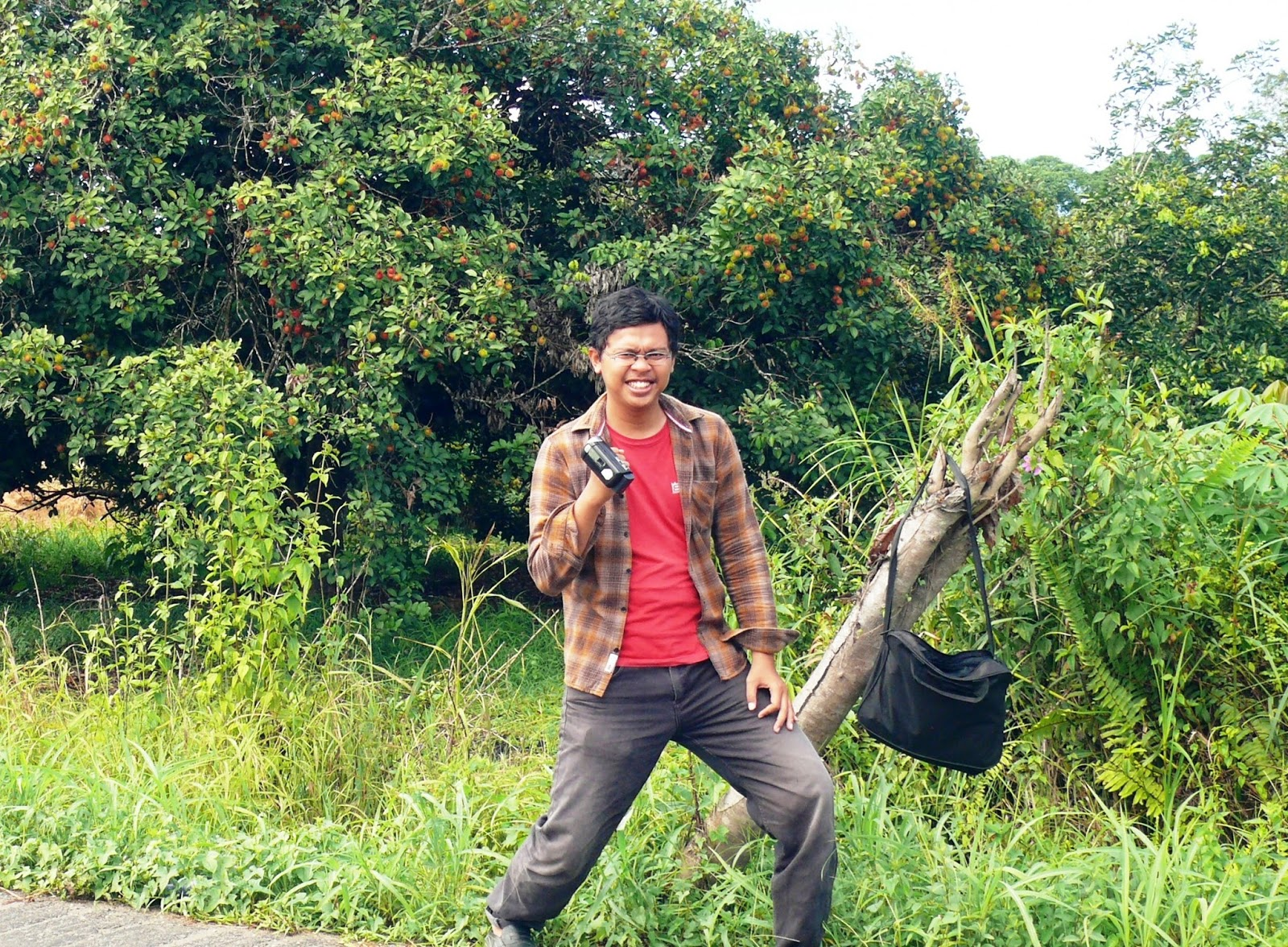 Kampung Rambutan Ala Kaltara Taman Selimau Kab Bulungan