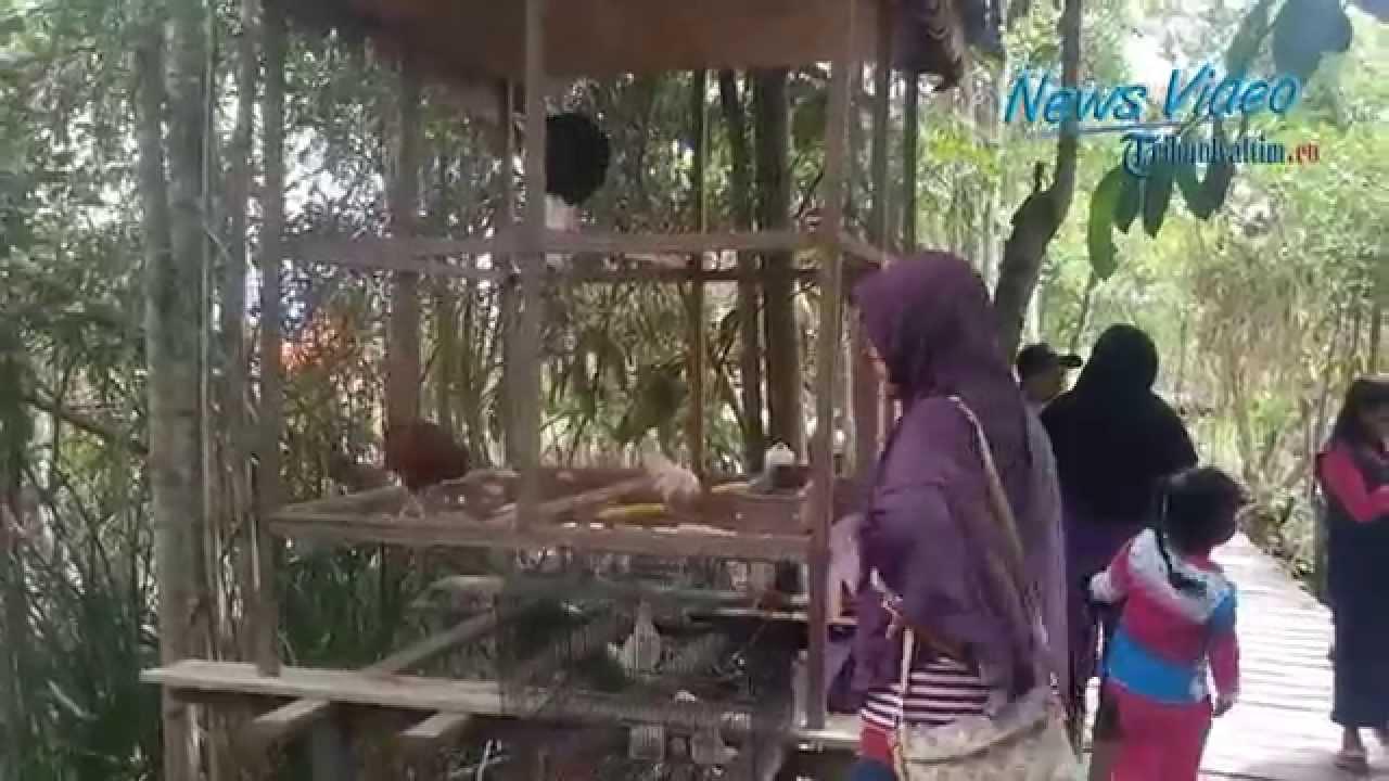 Video Selimau Park Jadi Favorit Warga Liburan Akhir Pekan Youtube
