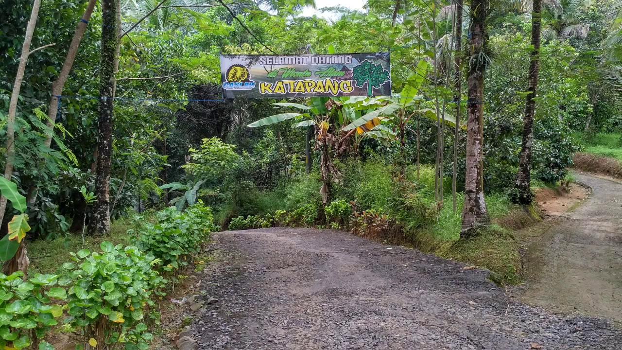 25 Tempat Wisata Cilacap Jawa Tengah Bagus Desa Matenggeng Terletak