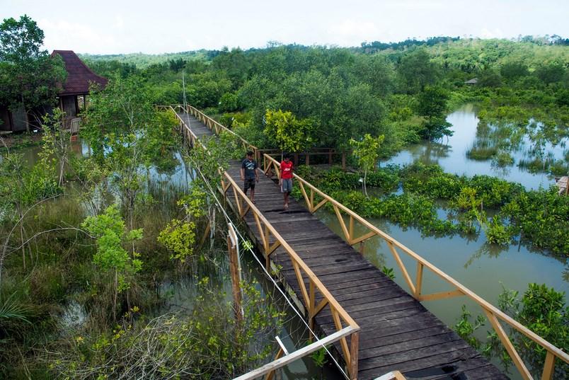 35 Tempat Wisata Cilacap Jawa Tengah Hits Seru Kampung Laut
