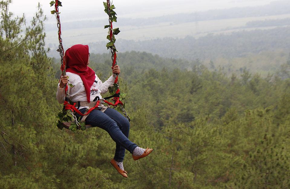 Alamat Harga Tiket Masuk Kemit Forest Cilacap Wisata Asyik Segudang