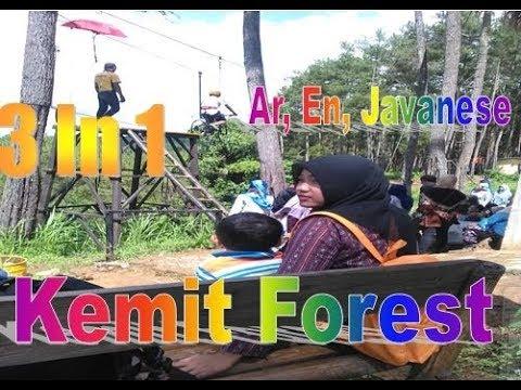 Edisi Kemit Forest Karanggedang Sidareja Cilacap 3 1 Arabic English