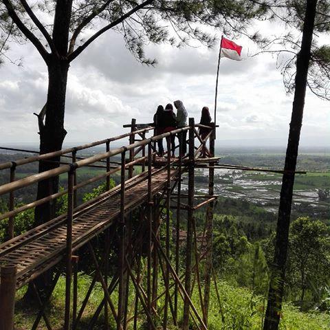 Images Kemit Forest Desa Karanggedang Kec Sidareja Kab Cilacap Echa