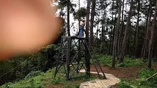 Kemit Cilacap Forest Hutan Kermit Karanggedang Kab