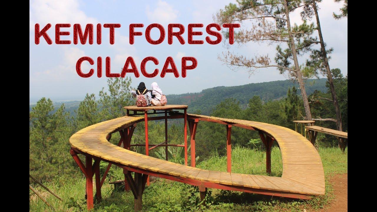Kemit Forest Cilacap Wisata Edukasi Hutan Pinus Aneka Wahana Selfie