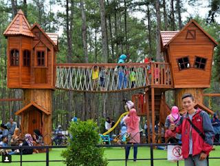 Kemit Forest Sidareja Wisata Instagramable Cilacap Jlb Hutan Kermit Karanggedang
