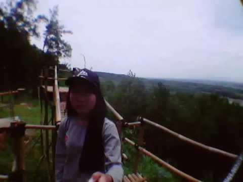 Kemit Forest Sidareja Youtube Hutan Kermit Karanggedang Kab Cilacap