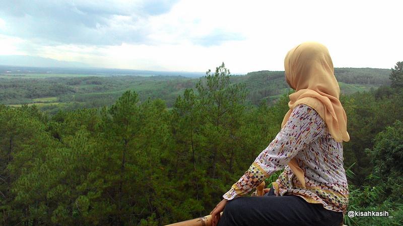 Kisahkasih Kemit Forest Wisata Edukasi Sidareja Cilacap Pemandangan Kecamatan Hutan