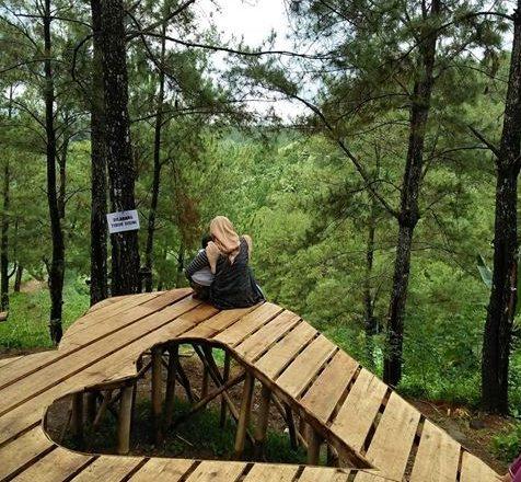 Wisata Hutan Pinus Karanggedang Cilacap Jawa Tengah Sidareja Provinsi 53261