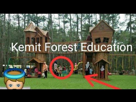 Wisata Kemit Forest Education Sidareja Cilacap Youtube Hutan Kermit Karanggedang