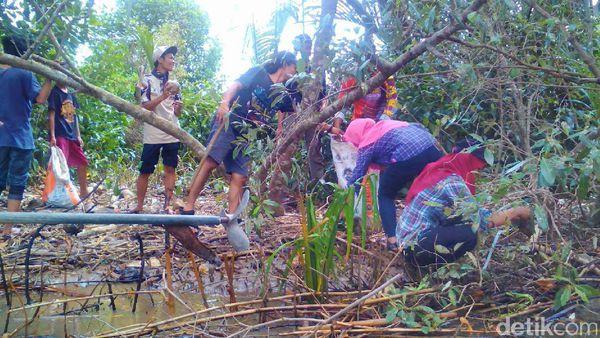 Bersih Sampah Segara Anakan Kampung Laut Cilacap Kab