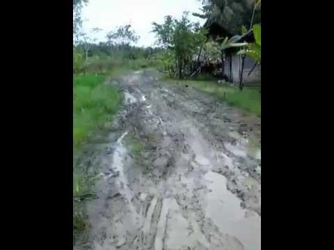 Jln Rusak Kec Kampung Laut Dusun Kalenbener Kab Cilacap Youtube